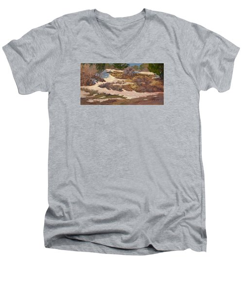 Snow Patch Men's V-Neck T-Shirt