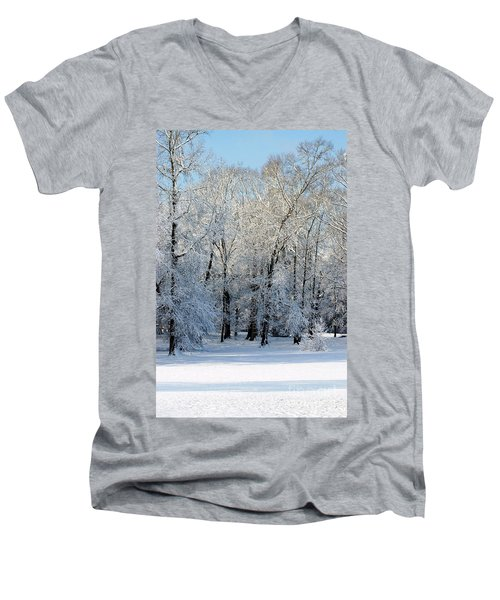 Snow Scene One Men's V-Neck T-Shirt