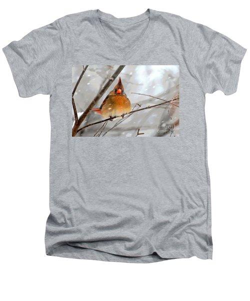 Snow Surprise Men's V-Neck T-Shirt