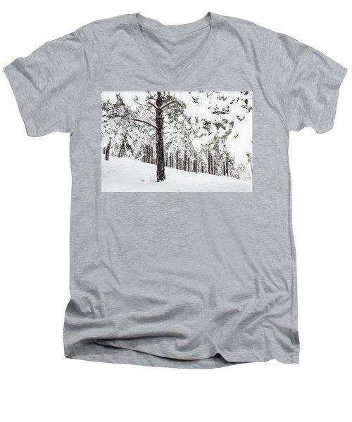 Snowy-4 Men's V-Neck T-Shirt
