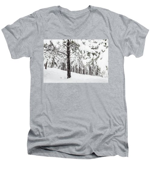 Snowy-4 Men's V-Neck T-Shirt
