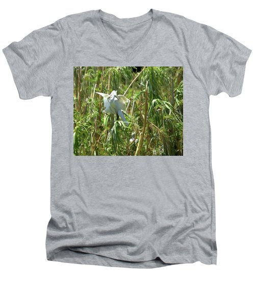 Snowy Egret Feeding Its Young - Digitalart Men's V-Neck T-Shirt