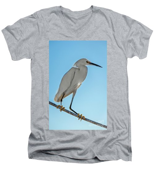 Snowy Egret Men's V-Neck T-Shirt by Robert Bales