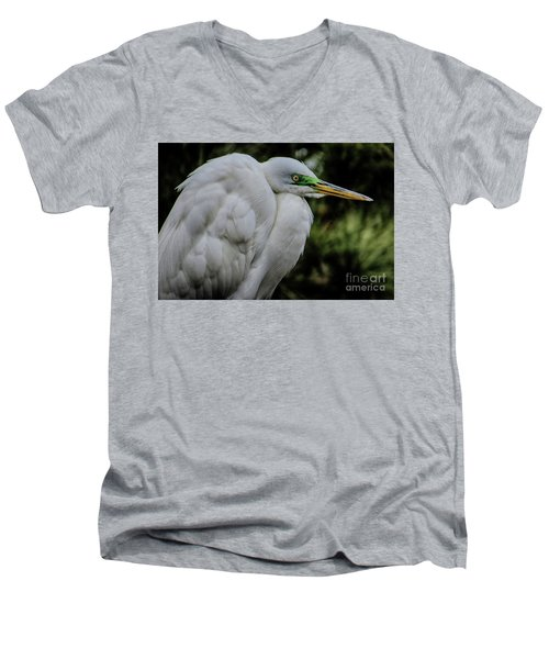 Snowy Egrets Men's V-Neck T-Shirt