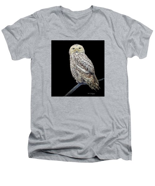 Snowy Owl On Black Men's V-Neck T-Shirt by Constantine Gregory