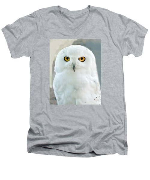 Snowy Owl Portrait Men's V-Neck T-Shirt