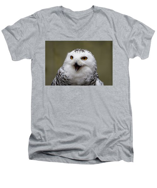 Snowy Sings Men's V-Neck T-Shirt