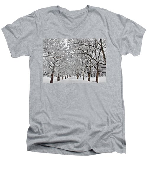 Snowy Treeline Men's V-Neck T-Shirt by Aimee L Maher Photography and Art Visit ALMGallerydotcom