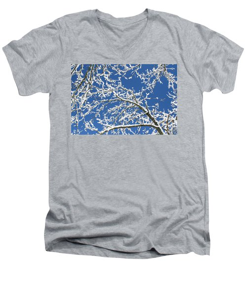 Sns-1 Men's V-Neck T-Shirt