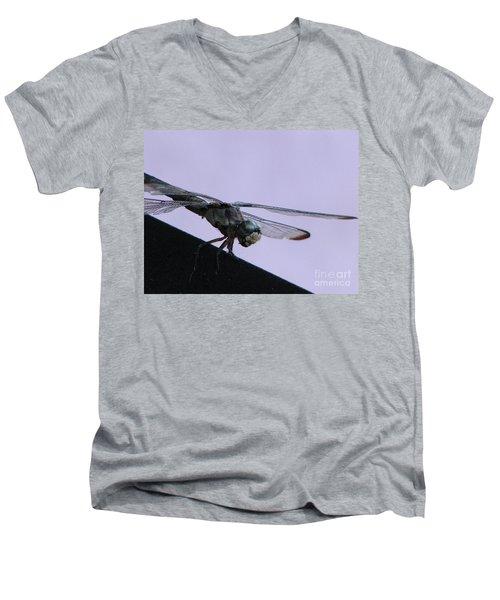 So Many Bugs So Little Time Men's V-Neck T-Shirt