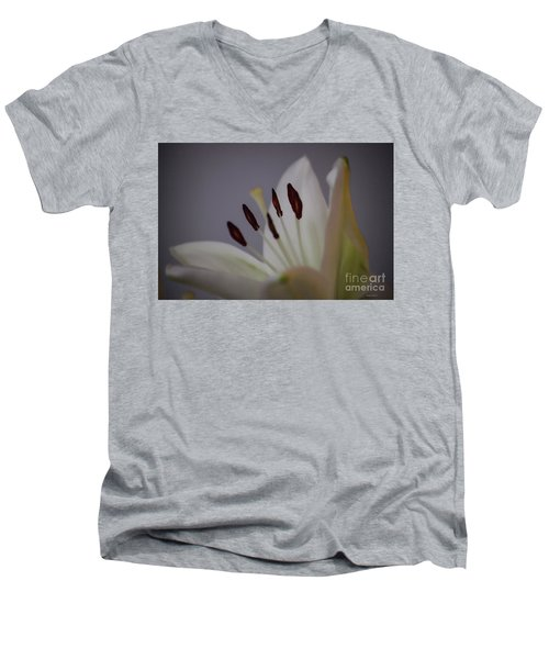 Soft Lily Men's V-Neck T-Shirt by Roberta Byram