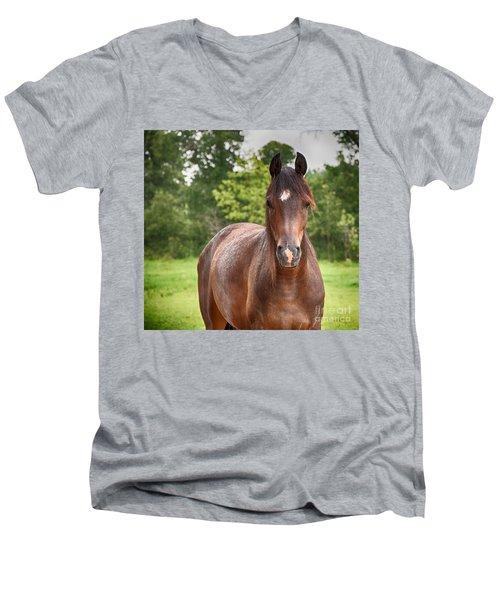 Soft Summer Rain Men's V-Neck T-Shirt