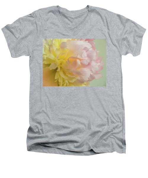 Softness And Light Men's V-Neck T-Shirt