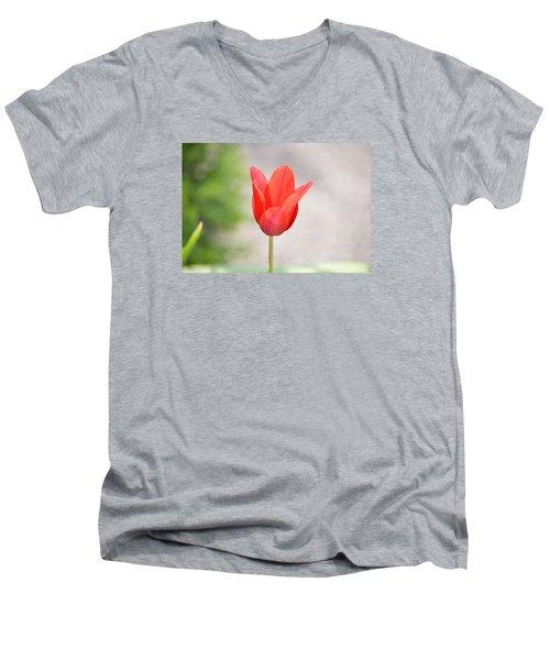 Solo Tulip Men's V-Neck T-Shirt