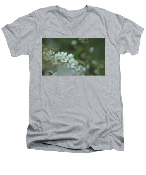 Some Gentle Feelings Men's V-Neck T-Shirt