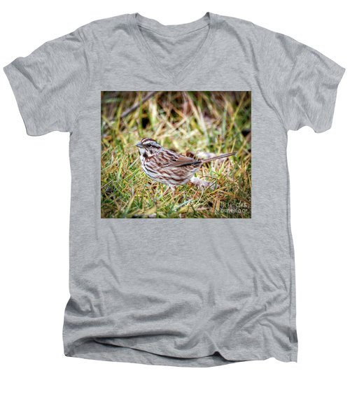 Men's V-Neck T-Shirt featuring the photograph Song Sparrow Sweetie by Kerri Farley