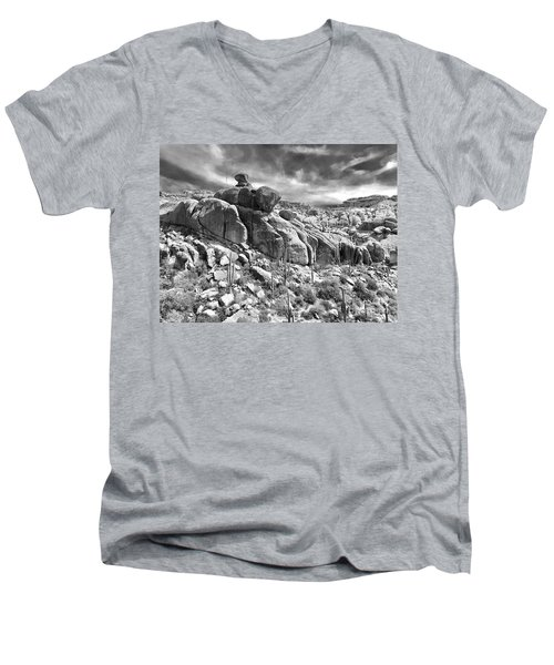 Sonora Desert Men's V-Neck T-Shirt