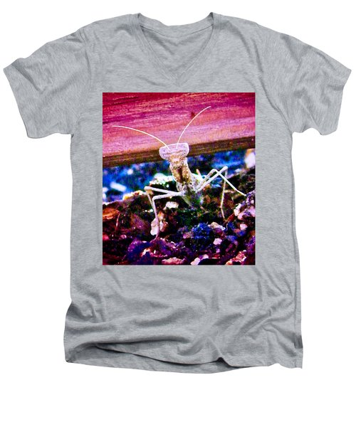 Sonoran Desert Ground Mantis Men's V-Neck T-Shirt