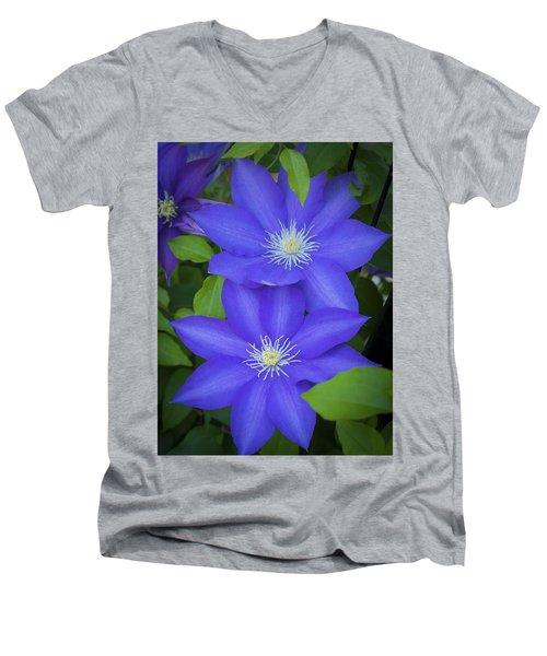 South Carolina Color Men's V-Neck T-Shirt