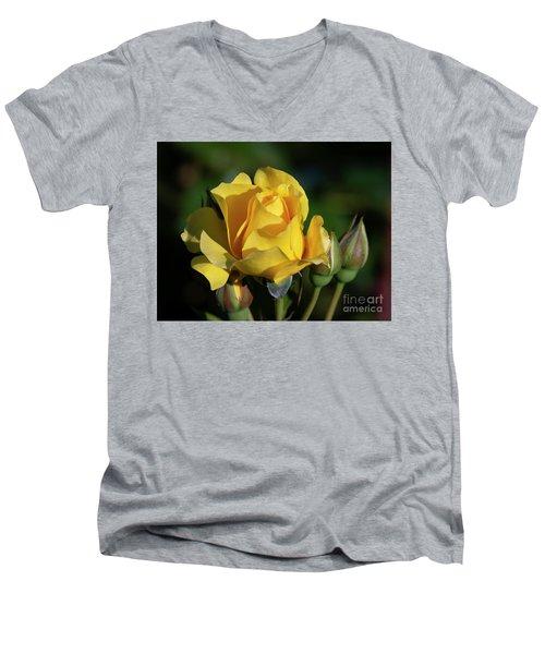 Sparkle N Shine Rose 6 Men's V-Neck T-Shirt