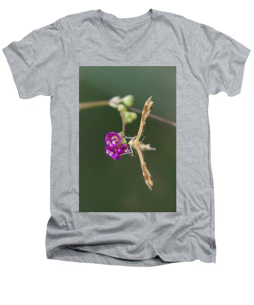 Spiderling Plume Moth On Wineflower Men's V-Neck T-Shirt