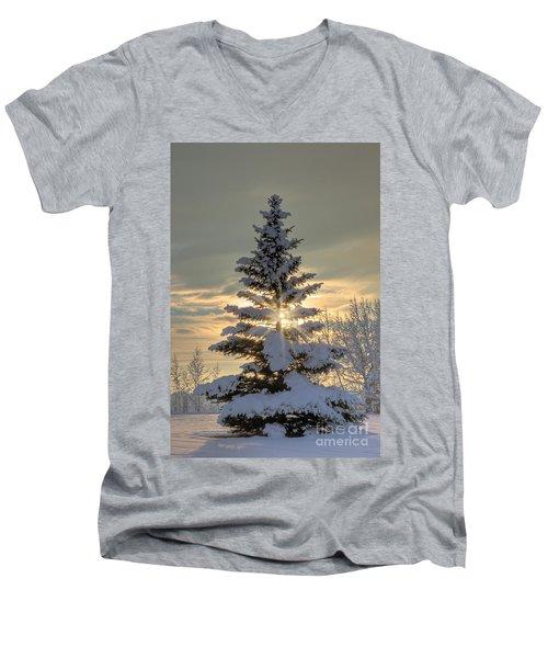 Spirit Tree Men's V-Neck T-Shirt by Brad Allen Fine Art