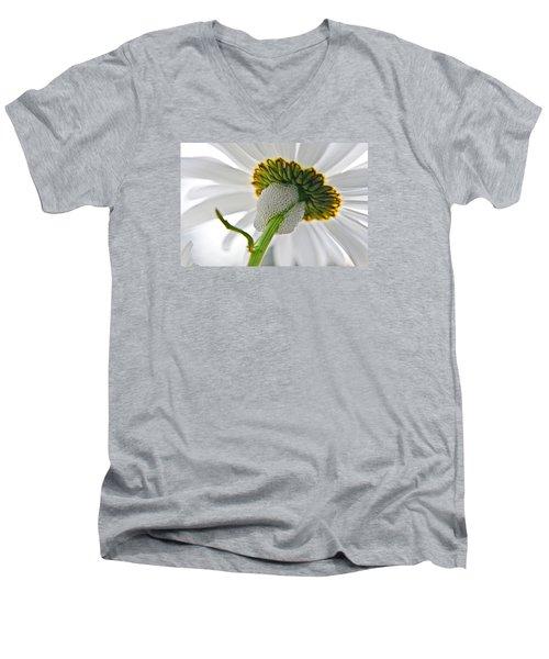 Spittle Bug Umbrella Men's V-Neck T-Shirt