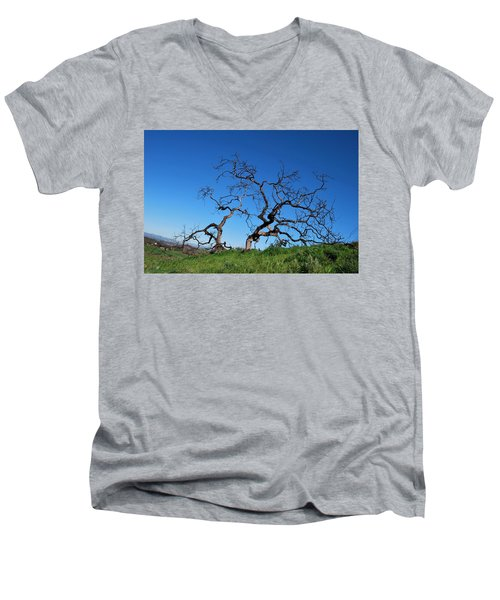 Split Single Tree On Hillside Men's V-Neck T-Shirt
