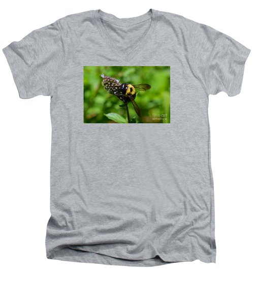 Spot, My Bumblebee Men's V-Neck T-Shirt