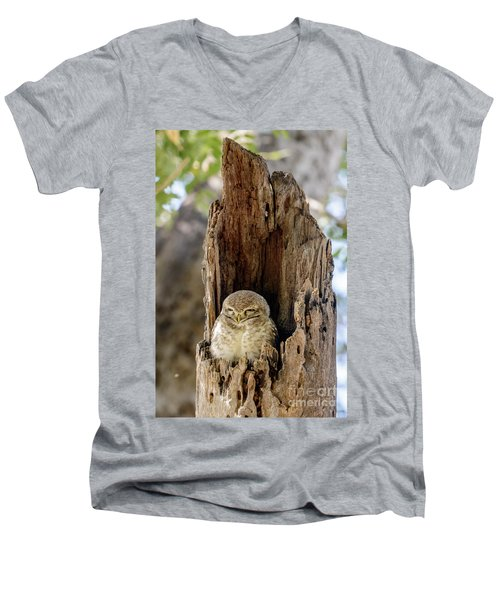 Spotted Owlet Men's V-Neck T-Shirt