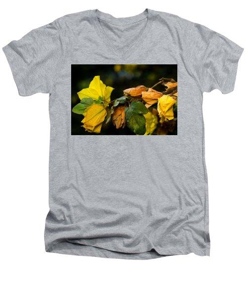 Spring Almost Gone Men's V-Neck T-Shirt