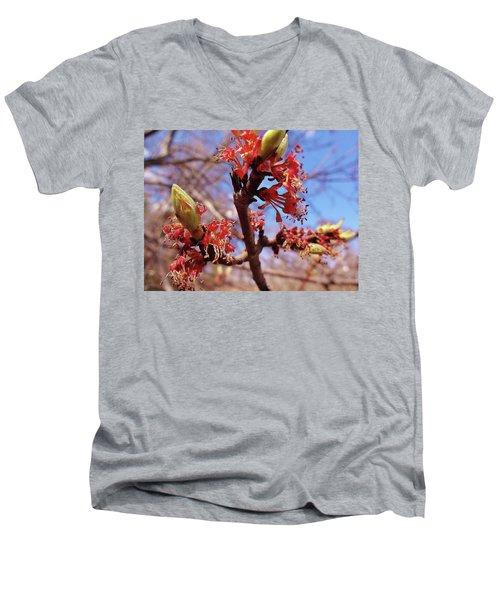 Spring Bloom #1 Men's V-Neck T-Shirt