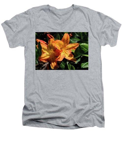 Spring Bloom Men's V-Neck T-Shirt