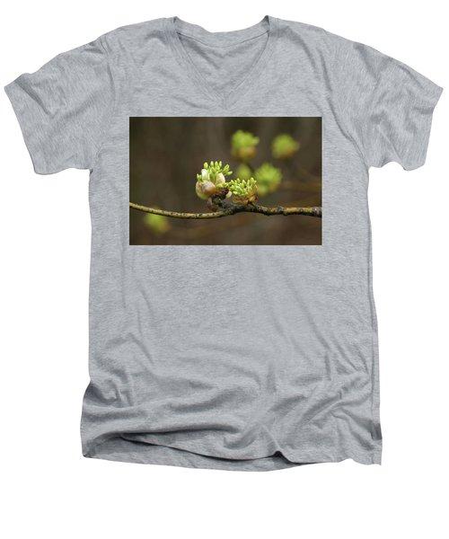 Spring Buds 9365 H_2 Men's V-Neck T-Shirt
