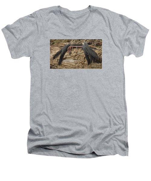 Spring Feathers Men's V-Neck T-Shirt