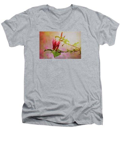 Spring Flare Men's V-Neck T-Shirt