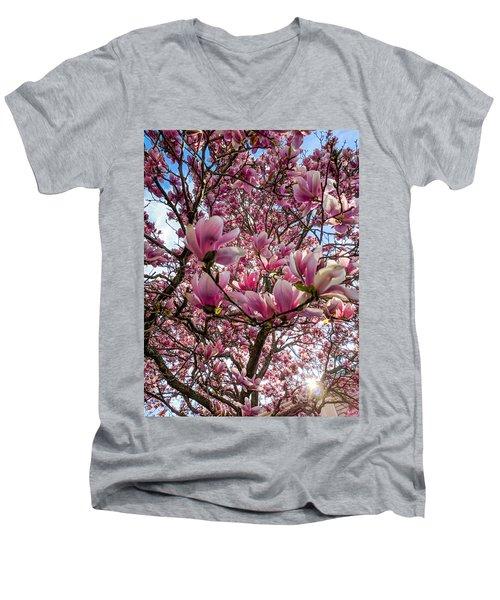 Spring Fractals Men's V-Neck T-Shirt