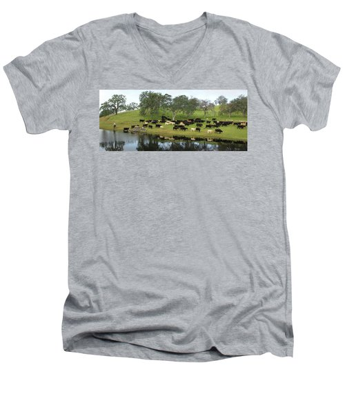 Spring Gather Men's V-Neck T-Shirt