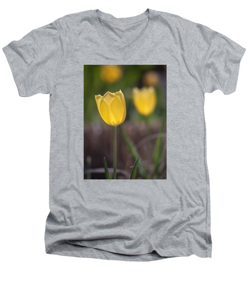 Spring Happiness Men's V-Neck T-Shirt by Morris  McClung