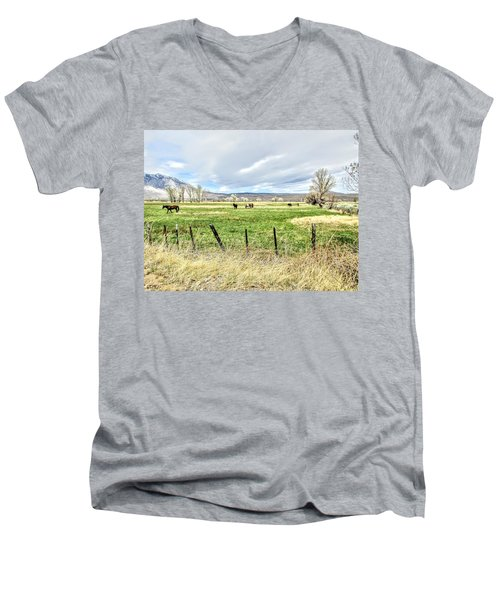Spring In The Valley Men's V-Neck T-Shirt