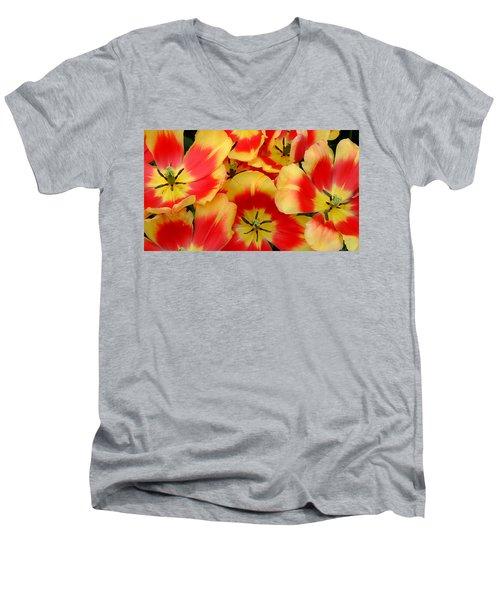 Spring Is Here Men's V-Neck T-Shirt