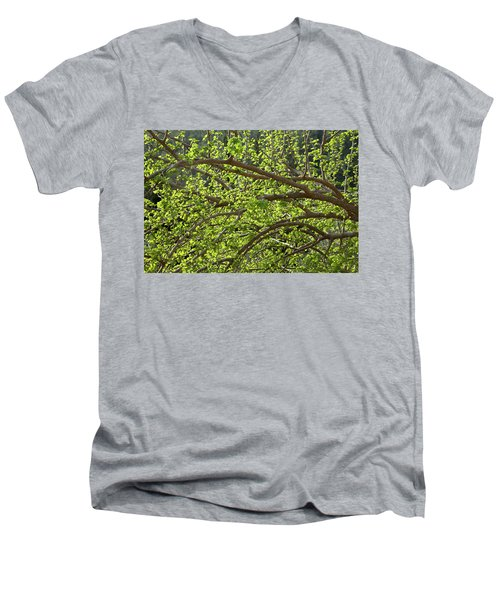 Spring Is Here Men's V-Neck T-Shirt by Yoel Koskas