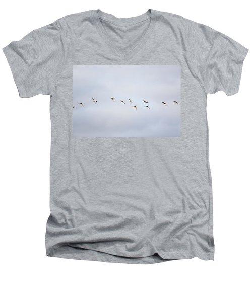 Spring Migration 2 Men's V-Neck T-Shirt