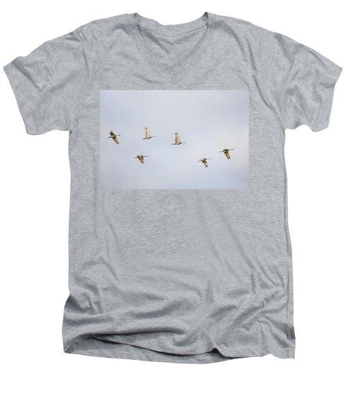 Spring Migration 3 Men's V-Neck T-Shirt