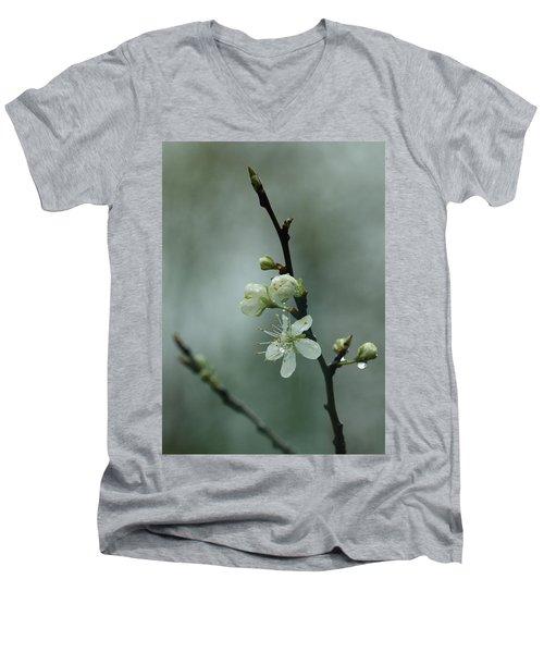Spring Rain Mood Men's V-Neck T-Shirt