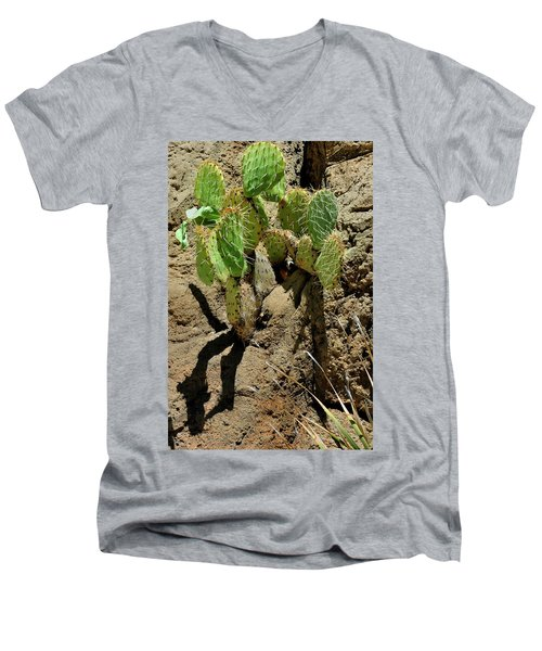 Spring Refreshment Men's V-Neck T-Shirt