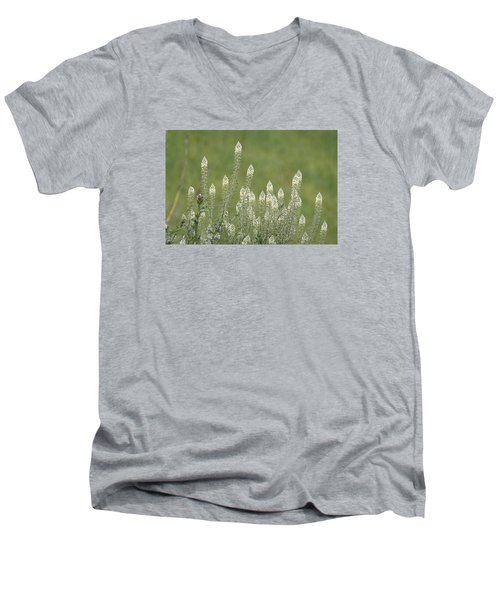 Spring Rockets Men's V-Neck T-Shirt