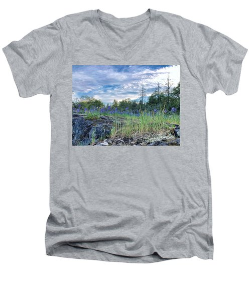 Spring Sky Men's V-Neck T-Shirt