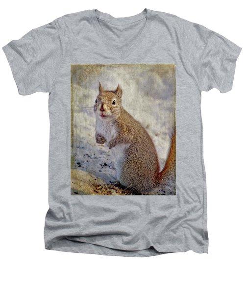 Spring Squirrel Men's V-Neck T-Shirt