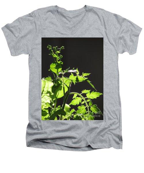 Spring103 Men's V-Neck T-Shirt